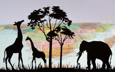 Alla scoperta degli animali della savana