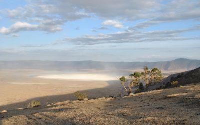 Un safari nel cratere di Ngorongoro