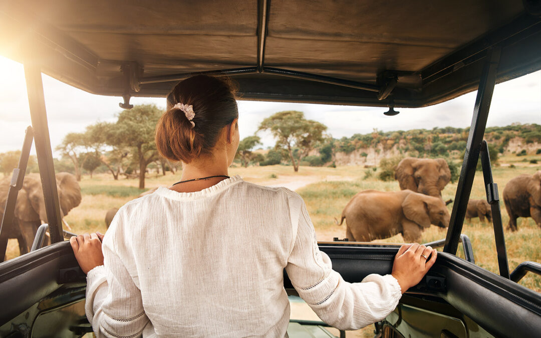 Una giornata di safari in Africa