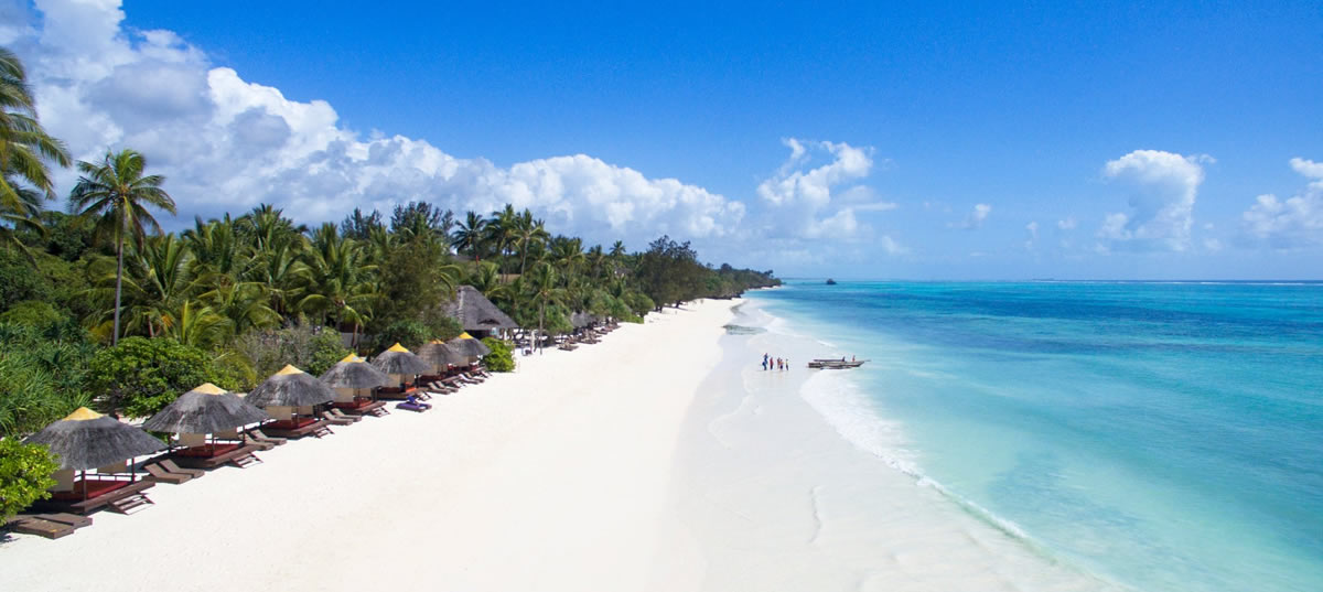 Circuito Zanzibar : Zanzibar primaland safaris